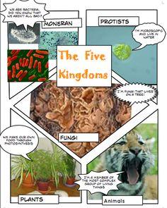 5 kingdoms of living things craft. Comic style. Science week 2.