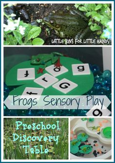 Frogs Sensory Play and Activities frog, pond