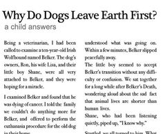 Why Do Dogs Leave Earth First? (A Child Answers)- this made me want to cry... it is so true.