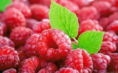My favorite berry (Tumblr)