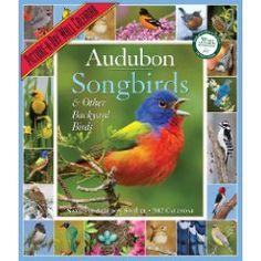 songbird calendar, 2012 pictureaday, wall calendar, pictureaday wall, audubon 365, 365 songbird, calendar 2012