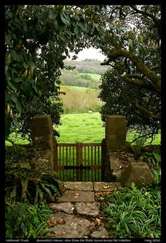 Gorgeous view from a lovely garden...
