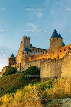 Medieval town of Carcassonne at sunset #France