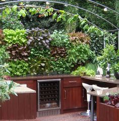 an edible wall garden set up by an outside mini kitchen. a tomato vine (or several) would love that arched trellis above.