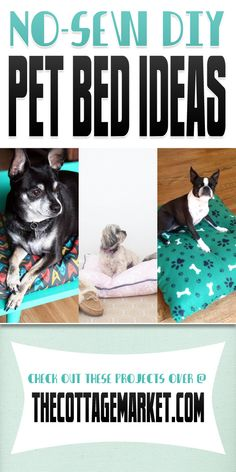 diy pet stuff, pet diy, no sew dog bed, diy pet beds