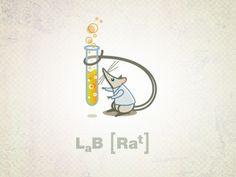 Lab Rat..