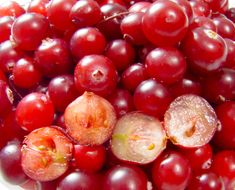 The Health Benefits Of Cranberries And Cranberry Juice