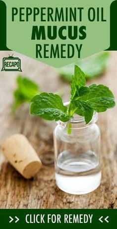 Scratchy throat? Try Dr Oz's Peppermint Oil Mucus Remedy as a natural solution for a pesky cough. http://www.recapo.com/dr-oz/dr-oz-natural-remedies/dr-oz-silent-reflux-diagnosis-silent-mucus-peppermint-home-remedy/