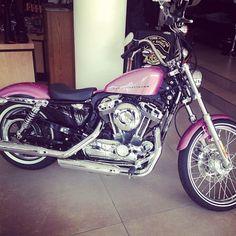Pink Harley? Cuteeee<3