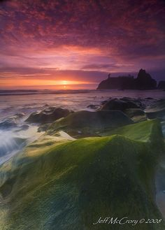 Olympic Peninsula - Washington