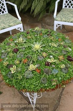 Don't need a coaster with this table top!    By Succulent Container Gardens