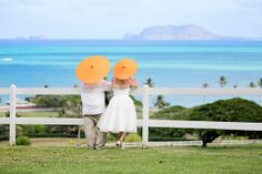 The bride & groom checking out the gorgeous scenery at Kualoa Ranch Hawaii! {Photo: BluElla Photography}