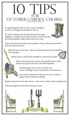 10 Tips for October Gardening - A Healthy Life For Me #october #gardening #tips
