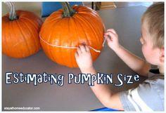 Estimating Pumpkin Width