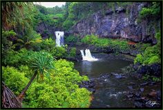 #Maui - Seven Sacred Pools how awesome is this? might need to look into this so i can visit one day