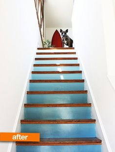Before & After: Amy's Stairway to Heaven | Apartment Therapy