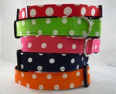 Dog Collar  Dog  Martingale or Cat Collar  by LearnedStitchworks, $14.00