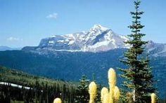 Check out the trip details of our Glacier National Park tour with Road Scholar.