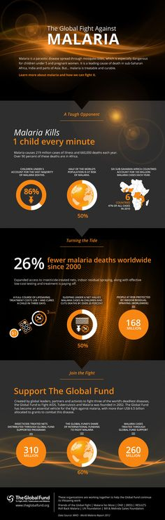 Did you know malaria kills one child every minute? Learn more about malaria and how we can fight it in this infographic from The Global Fund.