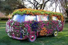 bouquet, wheel, flower power, volkswagen bus, flower beds