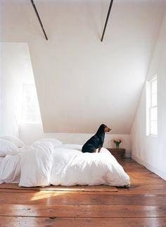 house design, design homes, home interiors, modern interior design, design interiors