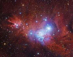 The Cone Nebula's neighborhood