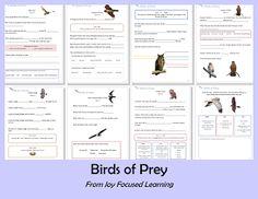 Bird of Prey Study Guide
