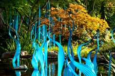 Dale Chihuly, Turquoise Reeds, 2012 and Blue Marlins, 2008 Dallas Arboretum, Dallas, installed 2012.