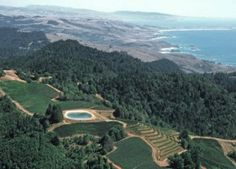Insider Tip: Fort Ross Winery overlooking the Sonoma Coast.