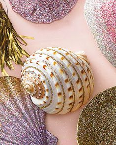 glitter sea shells
