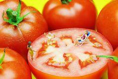 Tomato bath, little people on food, by Paul Ge