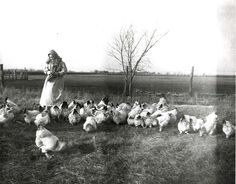 Early Settler Farming | Developed Farms (1850-1900)