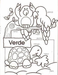 Actividades para colorear y leer verde