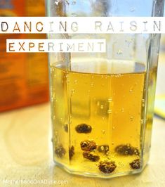 dancing raisin experiment - for a rainy summer day!