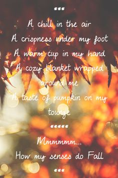 Oh how I love Fall - the sights, the smells, the tastes, the feeling.
