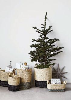 Baskets + Trees