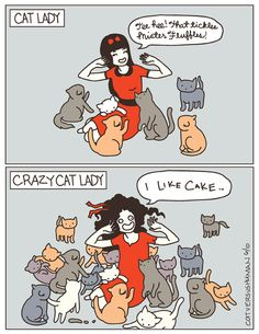 Cat Lady Or Crazy Cat Lady? So glad to know I'm just a cat lady