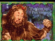 Put em' up Lion :)