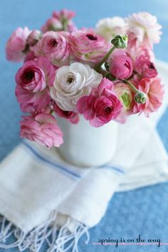 Pinks on white and blue.