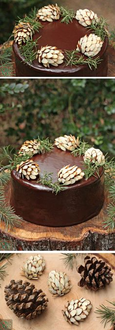 Chocolate Pine Cones