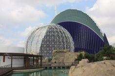 Oceanográfico, pajarera, (Félix Candela) y Agora, (Santiago Calatrava). Valencia.