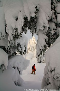 Snowshoeing in Turnagain Pass, Chugach National Forest, Alaska