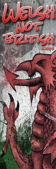 Welsh red dragon. Welsh!