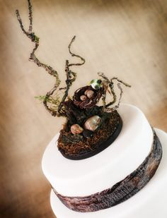 Rustic Wooden Bird Nest Cake topper woodsy, woodland, rustic mossy theme. $60.00, via Etsy.