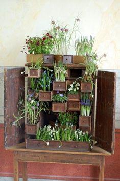 CreacionesVerdes: Jardines interiores / Indoor Gardens