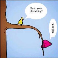 Make My Day Photo  #diet #everydaystruggle