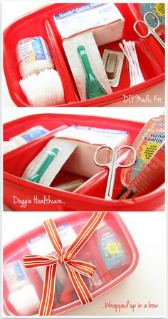 Doggy emergency kit! Gotta make one for all the animals :-) going to make sure to include a list of emergency things to do when something happens to the dog. Could be useful for the new puppy especially