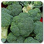 Organic Broccoli and Cole Crop Seeds
