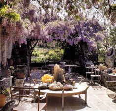 Lilac (or Wisteria?)  Either way, what a great place to enjoy a day!