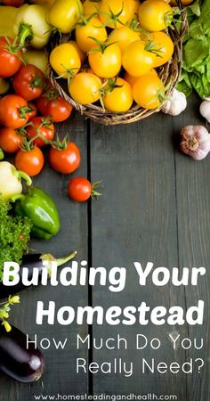 Building your homestead and how much do you really need?